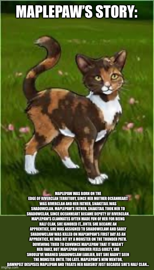 MAPLEPAW'S STORY:; MAPLEPAW WAS BORN ON THE EDGE OF RIVERCLAN TERRITORY, SINCE HER MOTHER OCEANHEART WAS RIVERCLAN AND HER FATHER, SNAKETAIL WAS SHADOWCLAN. MAPLEPAW'S FATHER, SNAKETAIL TOOK HER TO SHADOWCLAN, SINCE OCEANHEART BECAME DEPUTY OF RIVERCLAN. MAPLEPAW'S CLANMATES OFTEN MADE FUN OF HER FOR BEING HALF CLAN, SHE IGNORED IT...UNTIL SHE BECAME AN APPRENTICE, SHE WAS ASSIGNED TO SHADOWCLAW AND SADLY SHADOWCLAW WAS KILLED ON MAPLWPAW'S FIRST DAY AS AN APPRENTICE, HE WAS HIT BY A MONSTER ON THE THUNDER PATH. DOVEWING TRIED TO CONVINCE MAPLEPAW THAT IT WASN'T HER FAULT, BUT MAPLEPAW FOREVER FEELS GUILTY, SHE SHOULD'VE WARNED SHADOWCLAW EARLIER, BUT SHE HADN'T SEEN THE MONSTER UNTIL TOO LATE. MAPLEPAW'S NEW MENTOR, DAWNPELT DESPISES MAPLEPAW AND TREATS HER HARSHLY JUST BECAUSE SHE'S HALF CLAN... | made w/ Imgflip meme maker