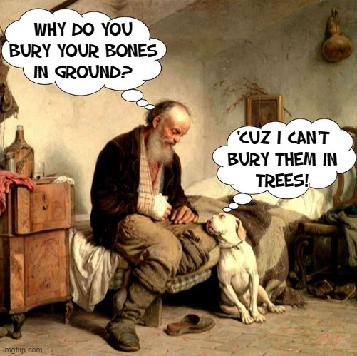 I'm looking for the man who shot your paw... |  WHY DO YOU BURY YOUR BONES IN GROUND? 'CUZ I CAN'T BURY THEM IN TREES! | image tagged in vince vance,old man,dogs,bury,bones,memes | made w/ Imgflip meme maker
