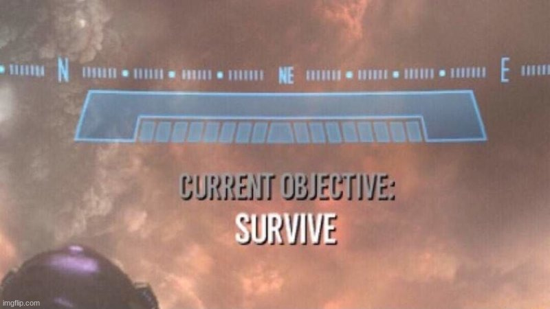 Current Objective: Survive | image tagged in current objective survive | made w/ Imgflip meme maker
