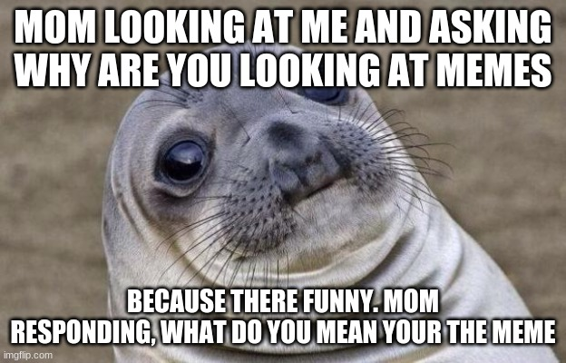 Mom? |  MOM LOOKING AT ME AND ASKING WHY ARE YOU LOOKING AT MEMES; BECAUSE THERE FUNNY. MOM RESPONDING, WHAT DO YOU MEAN YOUR THE MEME | image tagged in memes,awkward moment sealion | made w/ Imgflip meme maker
