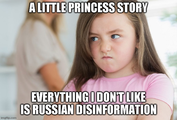 Little Princess Stories |  A LITTLE PRINCESS STORY; EVERYTHING I DON'T LIKE IS RUSSIAN DISINFORMATION | image tagged in fem-brat,democrats | made w/ Imgflip meme maker