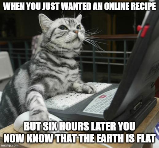 computer cat |  WHEN YOU JUST WANTED AN ONLINE RECIPE; BUT SIX HOURS LATER YOU NOW KNOW THAT THE EARTH IS FLAT | image tagged in computer cat | made w/ Imgflip meme maker