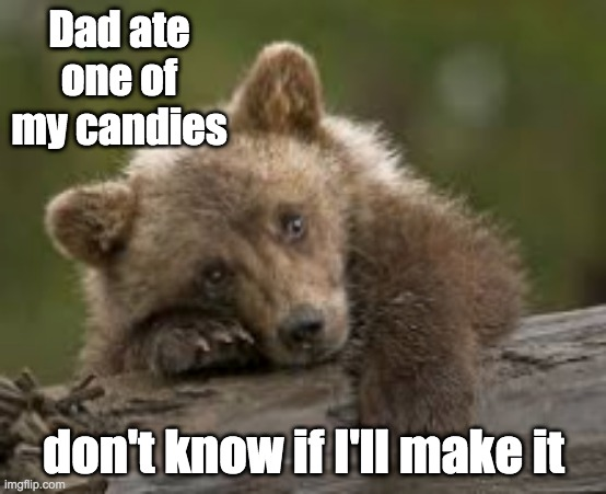 Sad bear Cub |  Dad ate one of my candies; don't know if I'll make it | image tagged in sad bear cub,dad,candy,bear | made w/ Imgflip meme maker