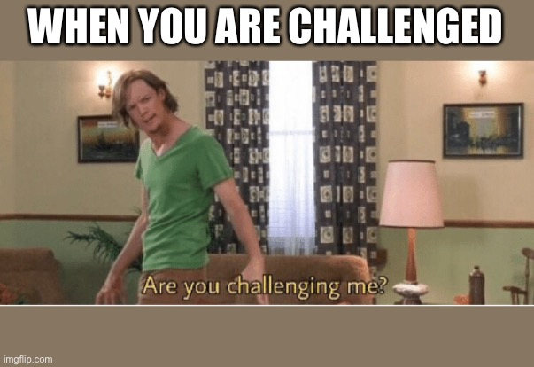 are you challenging me |  WHEN YOU ARE CHALLENGED | image tagged in are you challenging me | made w/ Imgflip meme maker
