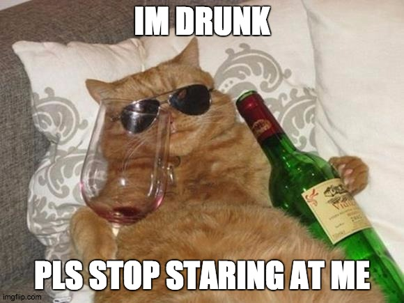 Funny Cat Birthday |  IM DRUNK; PLS STOP STARING AT ME | image tagged in funny cat birthday | made w/ Imgflip meme maker