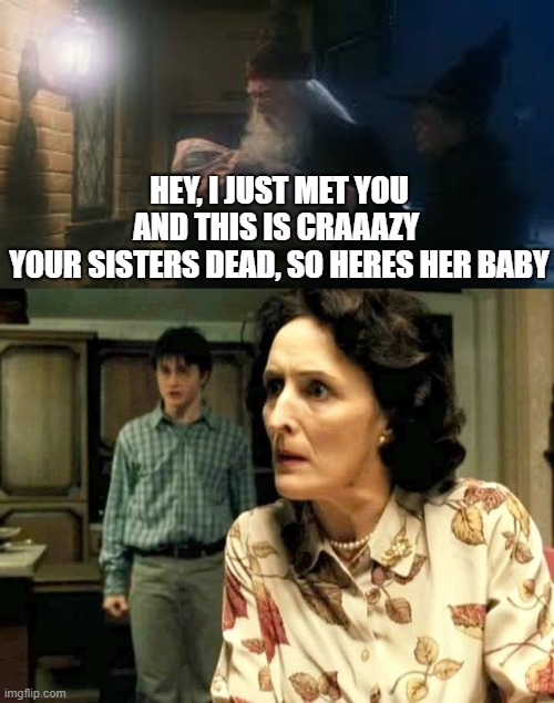 qtNord did an og starwars one like this |  HEY, I JUST MET YOU AND THIS IS CRAAAZY  YOUR SISTERS DEAD, SO HERES HER BABY | image tagged in harry potter | made w/ Imgflip meme maker