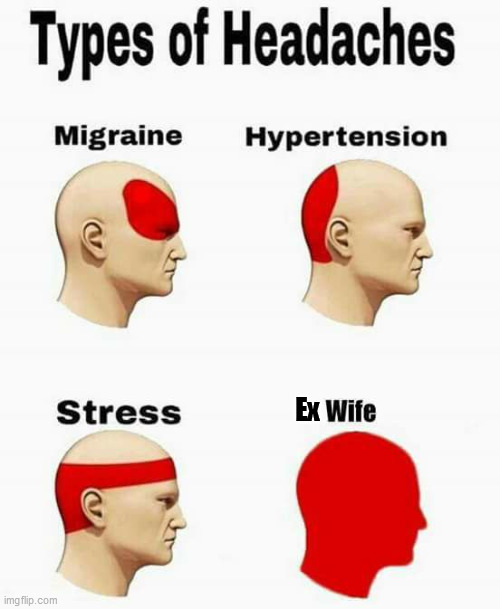 Types of headache |  Ex | image tagged in wife,ex-wife,types of headaches meme | made w/ Imgflip meme maker