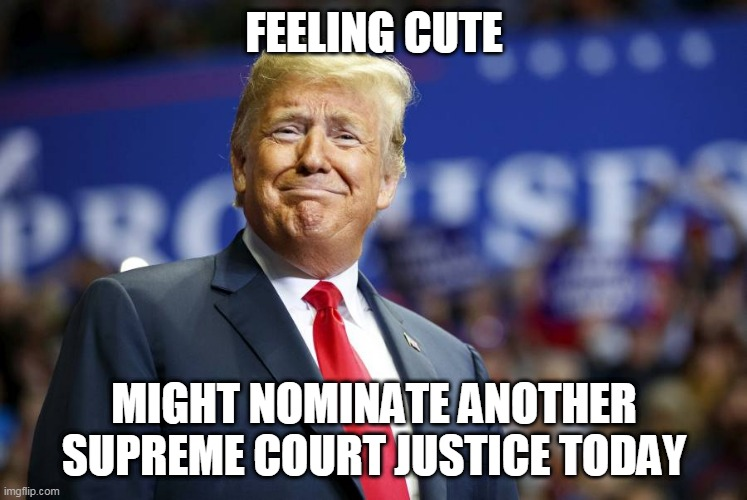 Trump feeling cute |  FEELING CUTE; MIGHT NOMINATE ANOTHER SUPREME COURT JUSTICE TODAY | image tagged in donald trump,trump,supreme court | made w/ Imgflip meme maker