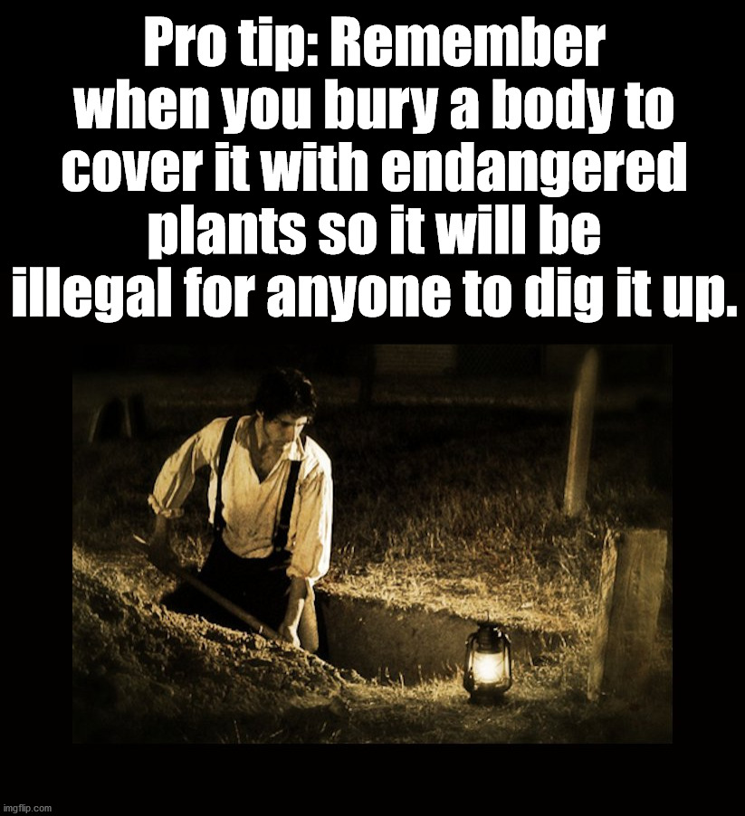Not that I would know this. |  Pro tip: Remember when you bury a body to cover it with endangered plants so it will be illegal for anyone to dig it up. | image tagged in grave digger,dead inside,tips,advice | made w/ Imgflip meme maker