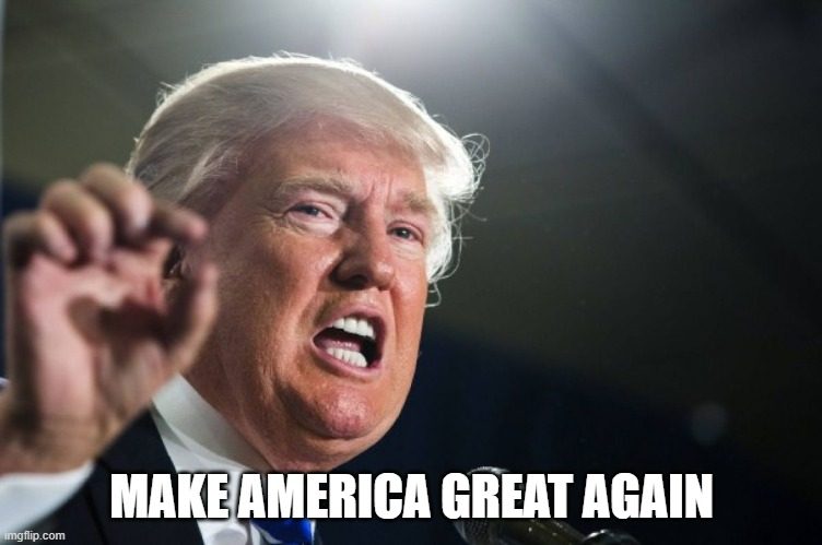 MAKE AMERICA GREAT AGAIN | image tagged in donald trump | made w/ Imgflip meme maker