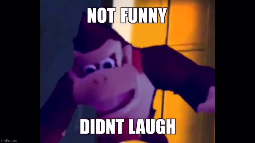 Not funny didn't laugh | image tagged in not funny didn't laugh | made w/ Imgflip meme maker