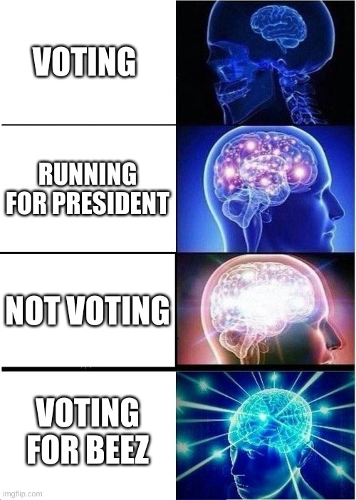 vote for beez |  VOTING; RUNNING FOR PRESIDENT; NOT VOTING; VOTING FOR BEEZ | image tagged in memes,expanding brain | made w/ Imgflip meme maker