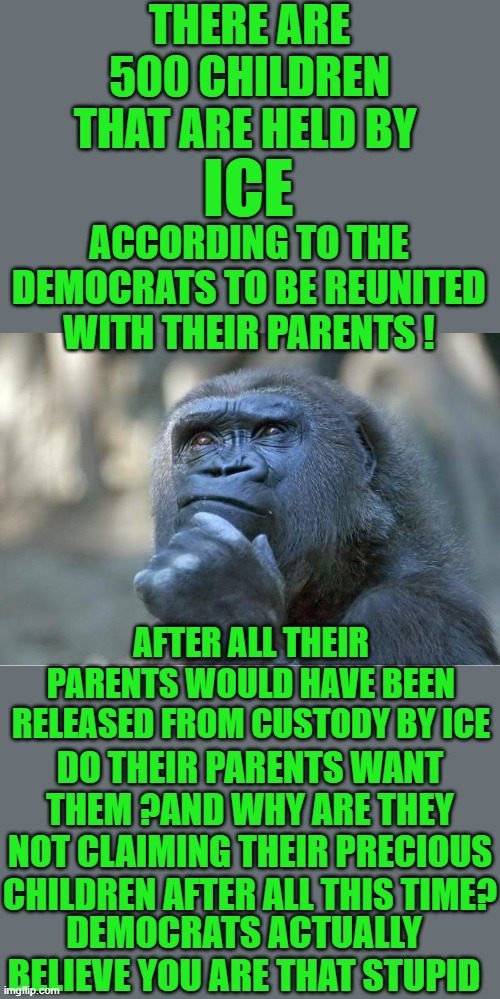 really now |  THERE ARE 500 CHILDREN THAT ARE HELD BY; ICE; ACCORDING TO THE DEMOCRATS TO BE REUNITED WITH THEIR PARENTS ! AFTER ALL THEIR PARENTS WOULD HAVE BEEN RELEASED FROM CUSTODY BY ICE; DO THEIR PARENTS WANT THEM ?AND WHY ARE THEY NOT CLAIMING THEIR PRECIOUS CHILDREN AFTER ALL THIS TIME? DEMOCRATS ACTUALLY BELIEVE YOU ARE THAT STUPID | image tagged in ice,democrats,socialism,fake news | made w/ Imgflip meme maker