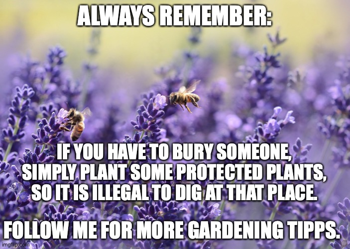 Remember |  ALWAYS REMEMBER:; IF YOU HAVE TO BURY SOMEONE, SIMPLY PLANT SOME PROTECTED PLANTS, SO IT IS ILLEGAL TO DIG AT THAT PLACE. FOLLOW ME FOR MORE GARDENING TIPPS. | image tagged in gardening,bury,tips | made w/ Imgflip meme maker