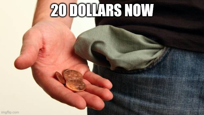 no money | 20 DOLLARS NOW | image tagged in no money | made w/ Imgflip meme maker