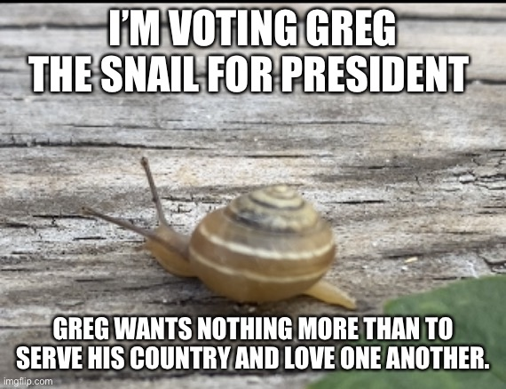 Greg loves you. Greg says you are beautiful |  I'M VOTING GREG THE SNAIL FOR PRESIDENT; GREG WANTS NOTHING MORE THAN TO SERVE HIS COUNTRY AND LOVE ONE ANOTHER. | image tagged in greg the snail | made w/ Imgflip meme maker