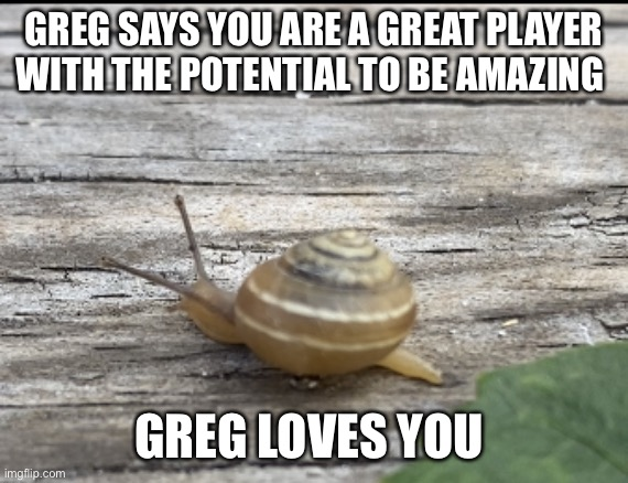 Greg thinks your great |  GREG SAYS YOU ARE A GREAT PLAYER WITH THE POTENTIAL TO BE AMAZING; GREG LOVES YOU | image tagged in greg the snail | made w/ Imgflip meme maker