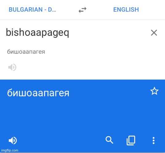 image tagged in memes,google translate | made w/ Imgflip meme maker