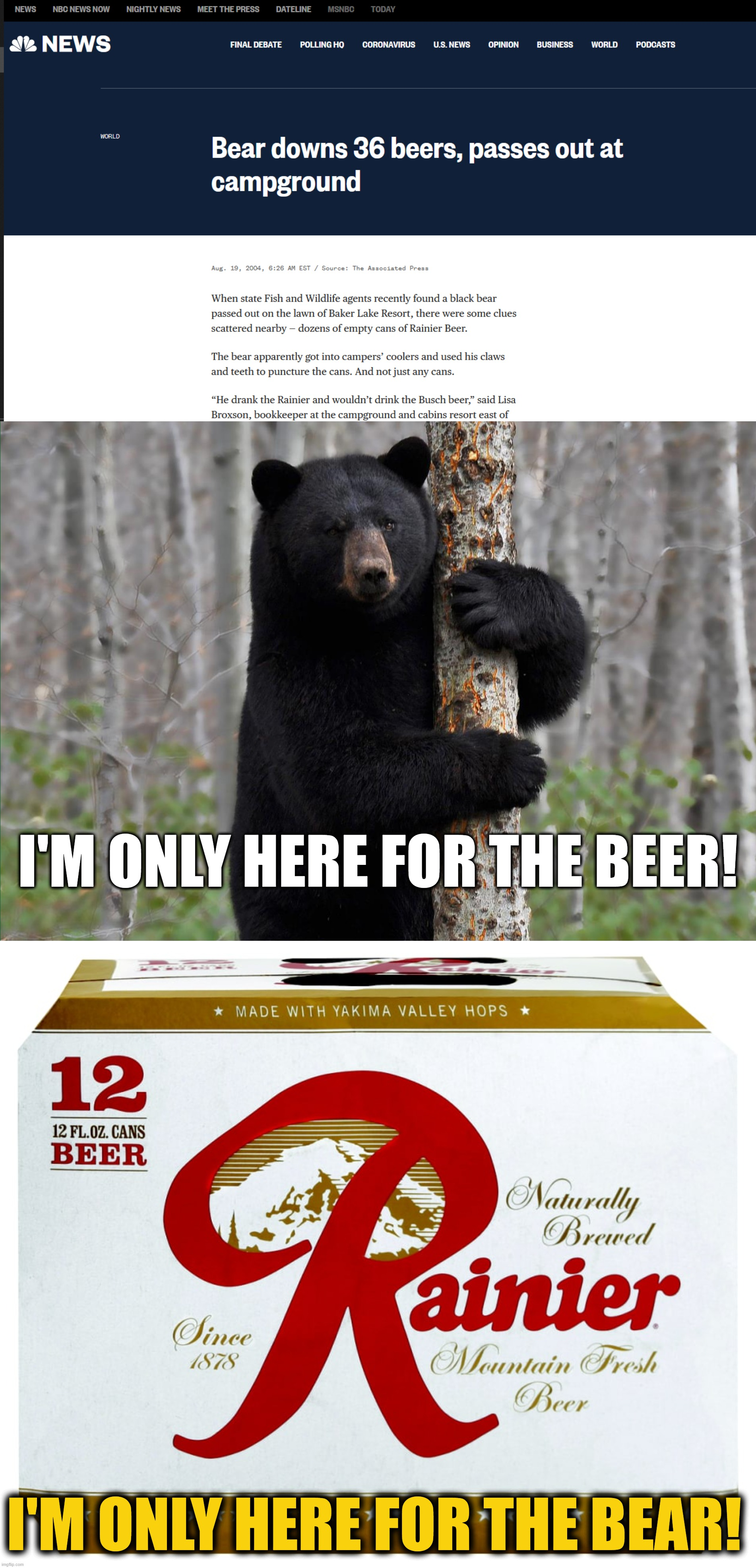 He wouldn't touch the Busch beer: only the Rainier because, even alcoholic bears have standards! |  I'M ONLY HERE FOR THE BEER! I'M ONLY HERE FOR THE BEAR! | image tagged in beer,bear,news | made w/ Imgflip meme maker