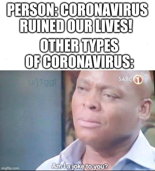 Haha |  PERSON: CORONAVIRUS RUINED OUR LIVES! OTHER TYPES OF CORONAVIRUS: | image tagged in am i a joke to you,coronavirus,covid-19,funny,memes | made w/ Imgflip meme maker