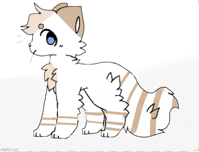 So my friend wanted to back a warrior cat OC for them so meet Racoon tail | made w/ Imgflip meme maker