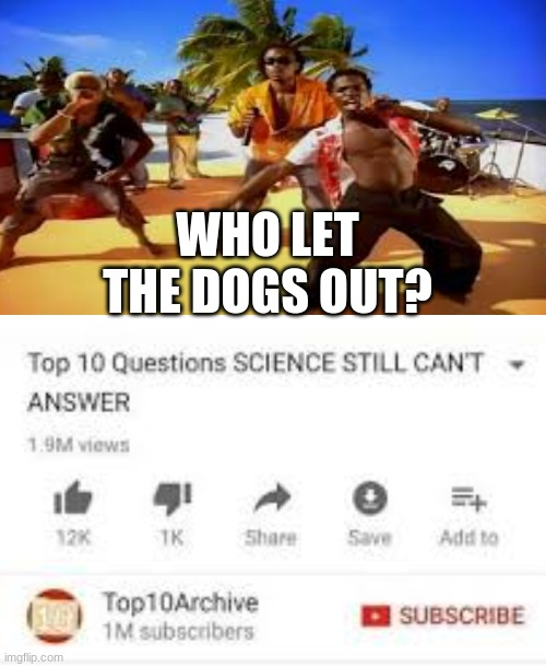 WHO LET THE DOGS OUT? | image tagged in memes,top 10 questions science still can't answer | made w/ Imgflip meme maker