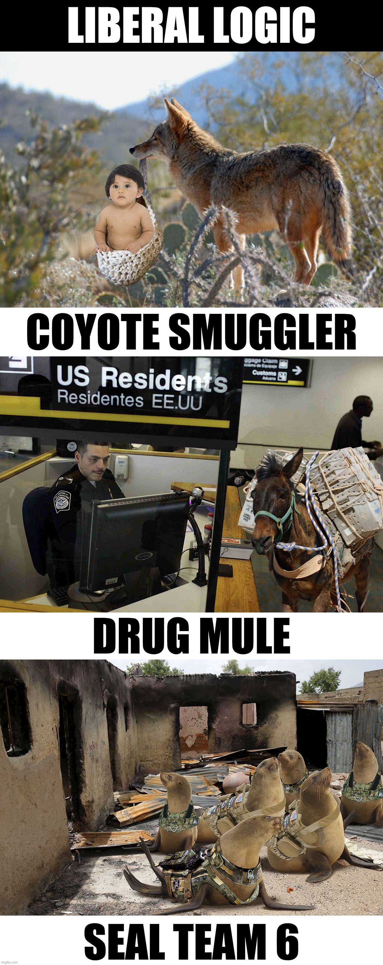 Liberal - College Liberal: Image Gallery | Know Your Meme ...