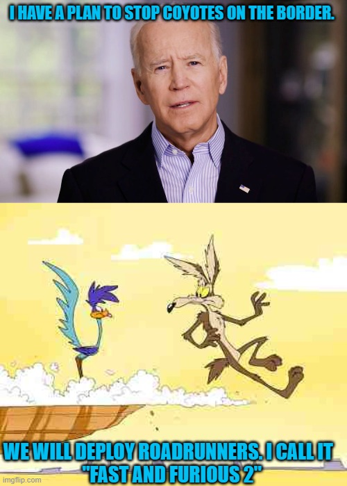 "I HAVE A PLAN TO STOP COYOTES ON THE BORDER. WE WILL DEPLOY ROADRUNNERS. I CALL IT   ""FAST AND FURIOUS 2"" 