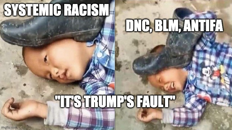 "Systemic Racism |  DNC, BLM, ANTIFA; SYSTEMIC RACISM; ""IT'S TRUMP'S FAULT"" 