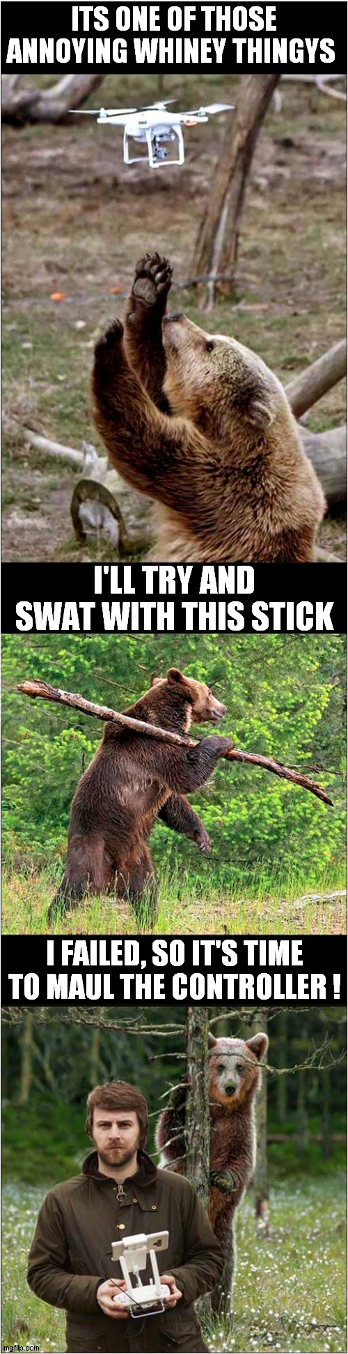 Bear Vs Drone |  ITS ONE OF THOSE ANNOYING WHINEY THINGYS; I'LL TRY AND SWAT WITH THIS STICK; I FAILED, SO IT'S TIME TO MAUL THE CONTROLLER ! | image tagged in fun,bear,drone | made w/ Imgflip meme maker