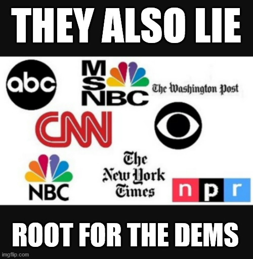 Media lies | THEY ALSO LIE ROOT FOR THE DEMS | image tagged in media lies | made w/ Imgflip meme maker