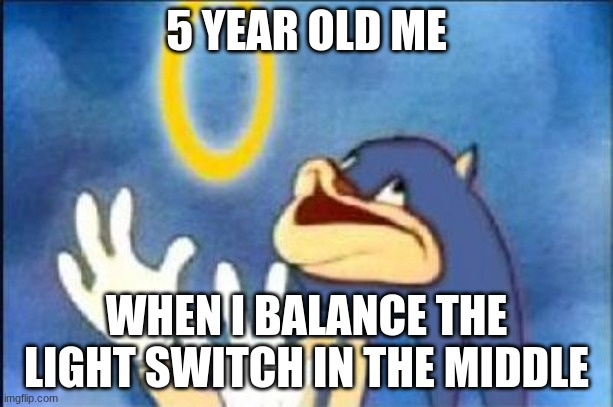 Sonic derp |  5 YEAR OLD ME; WHEN I BALANCE THE LIGHT SWITCH IN THE MIDDLE | image tagged in sonic derp | made w/ Imgflip meme maker