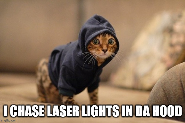 Hoody Cat |  I CHASE LASER LIGHTS IN DA HOOD | image tagged in memes,hoody cat | made w/ Imgflip meme maker