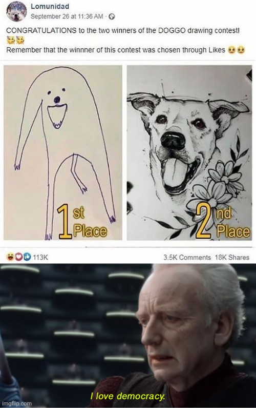 Best drawing | image tagged in i love democracy,drawing,doggo,dog,memes | made w/ Imgflip meme maker