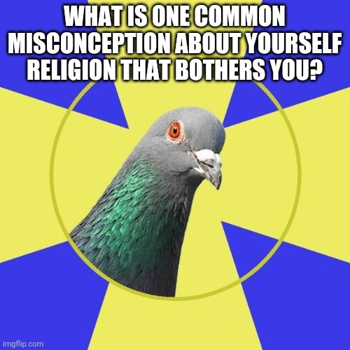 religion pigeon |  WHAT IS ONE COMMON MISCONCEPTION ABOUT YOURSELF RELIGION THAT BOTHERS YOU? | image tagged in religion pigeon | made w/ Imgflip meme maker