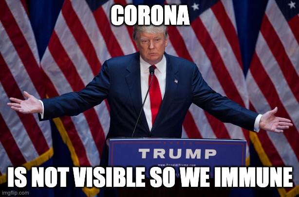 Donald Trump | CORONA IS NOT VISIBLE SO WE IMMUNE | image tagged in donald trump | made w/ Imgflip meme maker