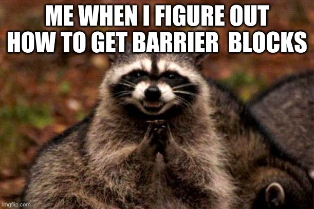 Evil Plotting Raccoon Meme |  ME WHEN I FIGURE OUT HOW TO GET BARRIER  BLOCKS | image tagged in memes,evil plotting raccoon | made w/ Imgflip meme maker