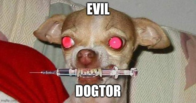Evil dogtor |  EVIL; DOGTOR | image tagged in dog,dogs,evil,doctor,memes,funny | made w/ Imgflip meme maker