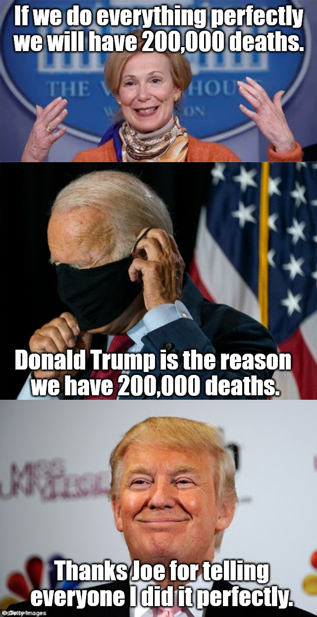 Guess Donald Trump did a perfect job. |  If we do everything perfectly we will have 200,000 deaths. Donald Trump is the reason  we have 200,000 deaths. Thanks Joe for telling everyone I did it perfectly. | image tagged in donald trump approves,joe biden 2020,corona virus,perfection | made w/ Imgflip meme maker