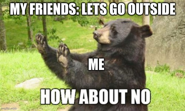 why tho? |  MY FRIENDS: LETS GO OUTSIDE; ME | image tagged in memes,how about no bear | made w/ Imgflip meme maker