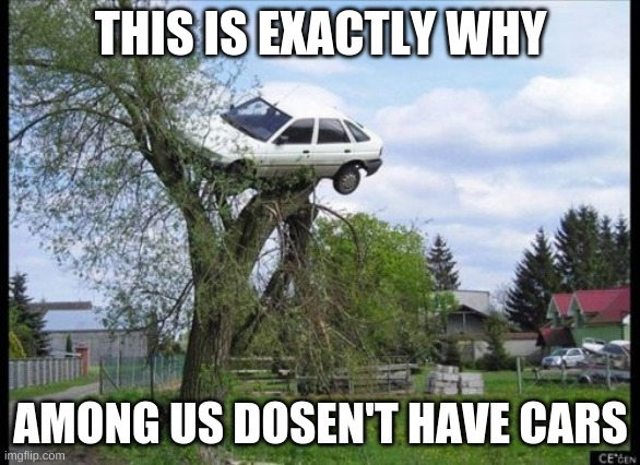 Secure Parking |  THIS IS EXACTLY WHY; AMONG US DOSEN'T HAVE CARS | image tagged in memes,secure parking | made w/ Imgflip meme maker