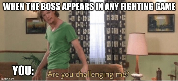 fighting game boss vs you |  WHEN THE BOSS APPEARS IN ANY FIGHTING GAME; YOU: | image tagged in are you challenging me | made w/ Imgflip meme maker