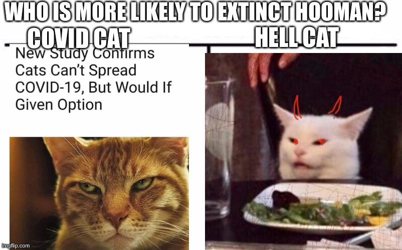 Who would win |  WHO IS MORE LIKELY TO EXTINCT HOOMAN? HELL CAT; COVID CAT | image tagged in cats,cat fight,two cats fighting for real,coronavirus,hell,cat meme | made w/ Imgflip meme maker