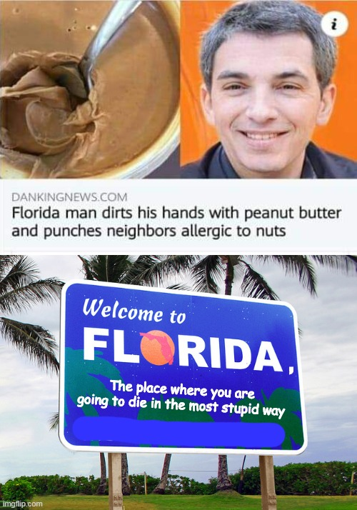 You're going to Florida, baby |  , The place where you are going to die in the most stupid way | image tagged in florida | made w/ Imgflip meme maker