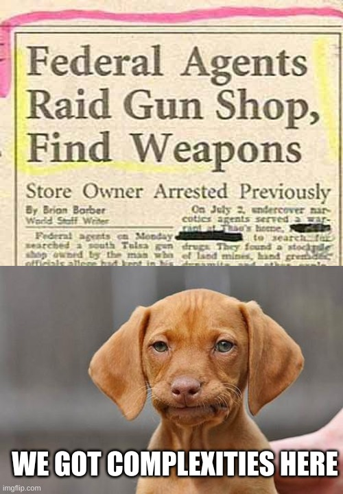 The gun shop be nuts |  WE GOT COMPLEXITIES HERE | image tagged in dissapointed puppy,weird stuff i do potoo | made w/ Imgflip meme maker