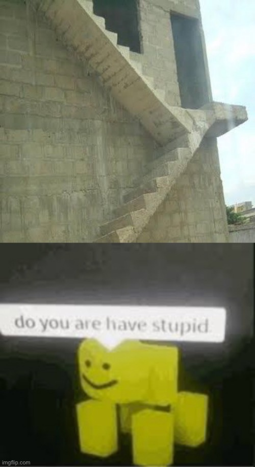 Why... | image tagged in do you are have stupid | made w/ Imgflip meme maker