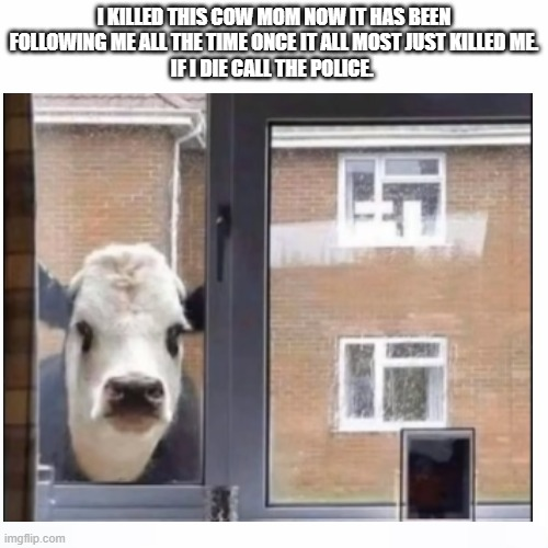 Am going to die |  I KILLED THIS COW MOM NOW IT HAS BEEN FOLLOWING ME ALL THE TIME ONCE IT ALL MOST JUST KILLED ME. IF I DIE CALL THE POLICE. | image tagged in memes,evil cows,dying,die | made w/ Imgflip meme maker