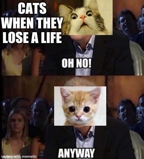 Oh no anyway |  CATS WHEN THEY LOSE A LIFE | image tagged in oh no anyway | made w/ Imgflip meme maker