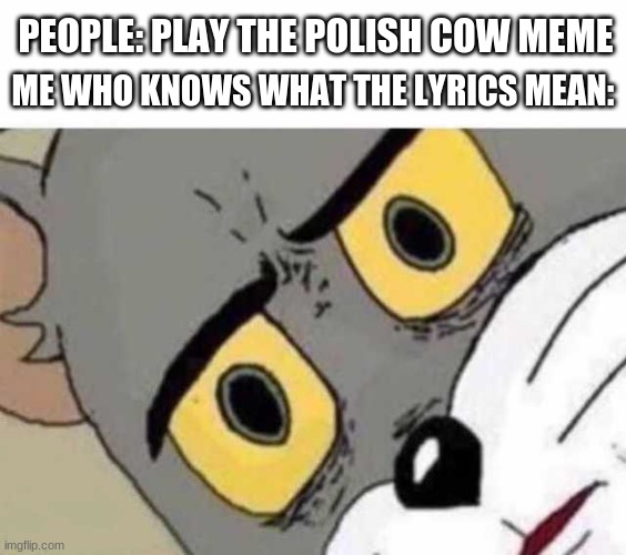 it is a pretty disturbing song. |  PEOPLE: PLAY THE POLISH COW MEME; ME WHO KNOWS WHAT THE LYRICS MEAN: | image tagged in tom cat unsettled close up | made w/ Imgflip meme maker