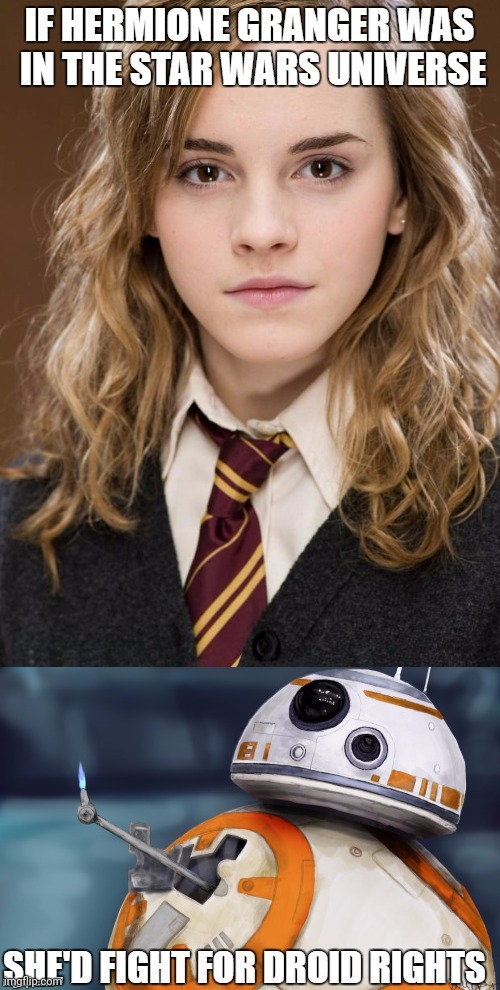 Hermione in star wars...? | image tagged in hermione granger,harry potter,star wars,universe | made w/ Imgflip meme maker